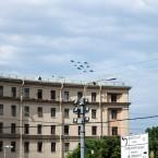 Стрижи и Русские Витязи Петербург (1)